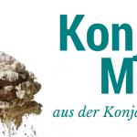 Konjak Mehl aus der Konjakwurzel